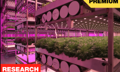 Interior Vertical Farming Location